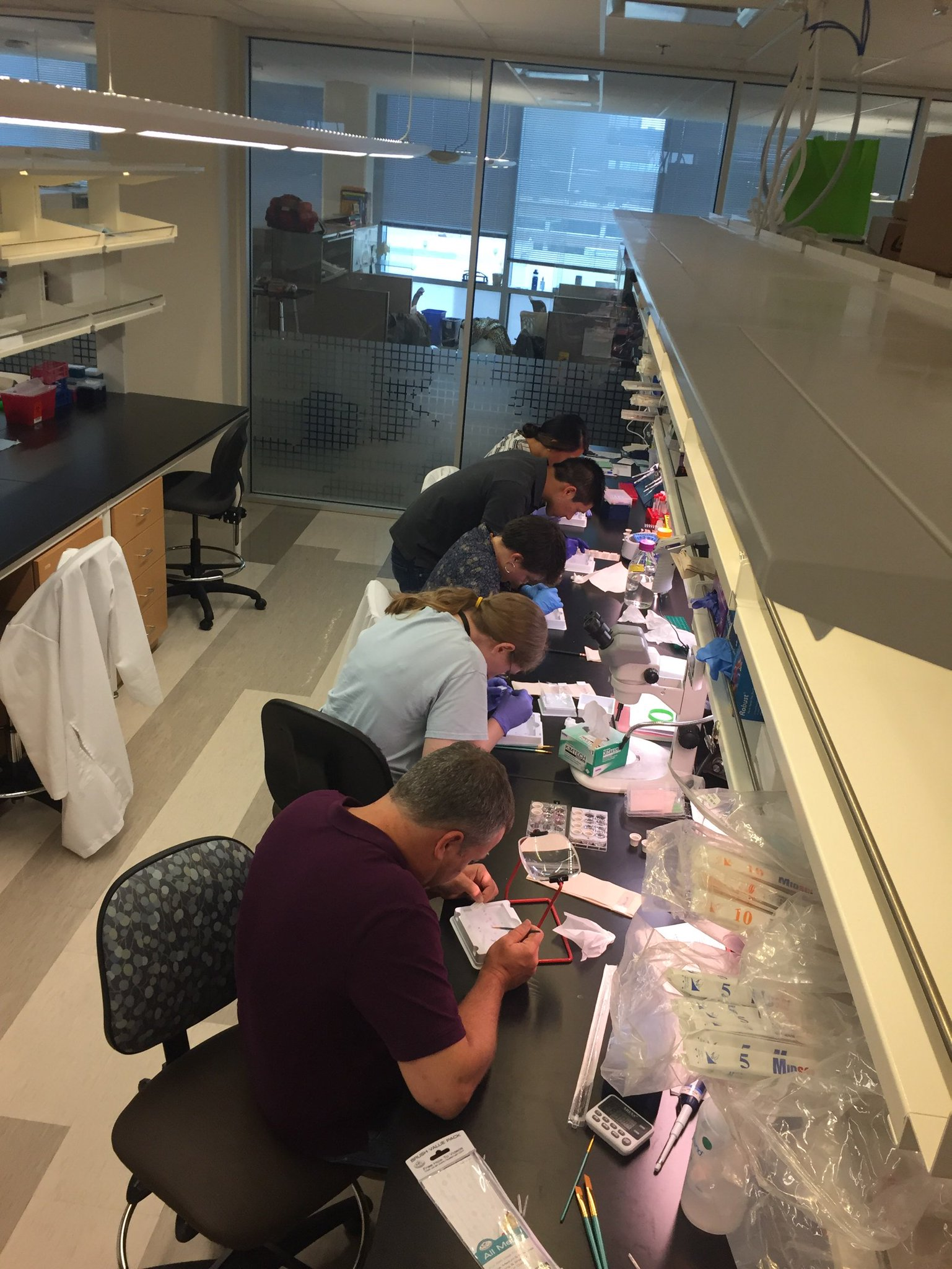 Joe (front), Claire (2nd front), Allen (standing), and summer students mounting tissue for a large IHC experiment (July 2019)